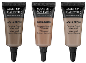 Aqua Brow - this product lasts for over a year!